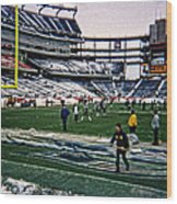 Shoveling Before The Game Wood Print