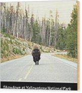 Showdown At Yellowstone Wood Print