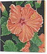 Showy Hibiscus Wood Print
