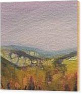 Shropshire Hills 4 Wood Print