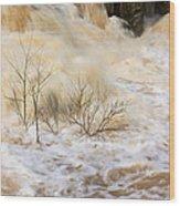 Shrubs In The Rapids #2 Wood Print