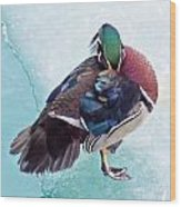 Shy Is A Wood Duck Wood Print