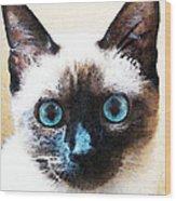 Siamese Cat Art - Black And Tan Wood Print by Sharon Cummings
