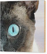 Siamese Cat Art - Half The Story Wood Print