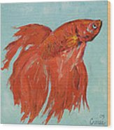 Siamese Fighting Fish Wood Print by Michael Creese