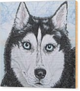 Siberian Husky Wood Print by Yvonne Johnstone