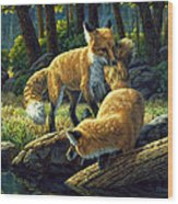 Red Foxes - Sibling Rivalry Wood Print