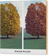 Sibling Rivalry Wood Print