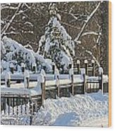 Side Cut Park Winter Wonderland Wood Print