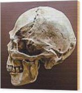 Side Profile View Of Human Skull   Wood Print