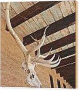 Side Skull  Wood Print