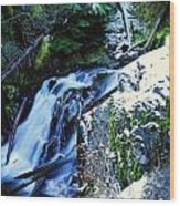 Side View Of Bumping Creek Falls Wood Print