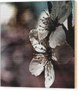 Side View Of White Flowers Wood Print