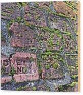 Sidney Island Brick  Wood Print