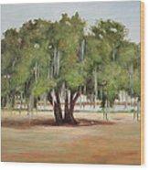 Sidney Lanier's Muse Wood Print