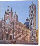 Siena Duomo At Sunset Wood Print by Liz Leyden