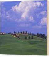 Siena Italy Wood Print