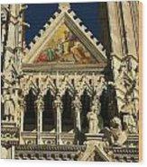 Sienna 2 Wood Print