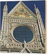 Sienna Cathedral Wood Print by Barbara Stellwagen