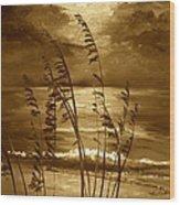 Sienna Moonlight Wood Print