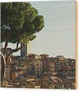 Sienna Skyline Wood Print by Barbara Stellwagen