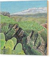 Sierra De Gador Wood Print