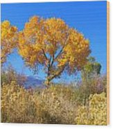 Sierra Gold Wood Print