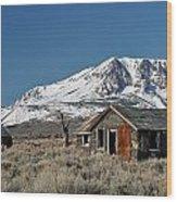 Sierra Nevadas 19 Wood Print