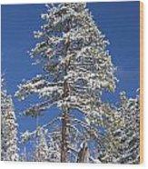 Sierra Snow Wood Print