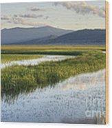 Sierra Valley Wetlands Wood Print
