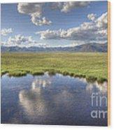 Sierra Valley Wetlands II Wood Print