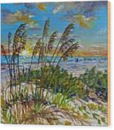 Siesta Beach Sunset Dunes Wood Print