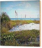 Siesta Beach View Wood Print