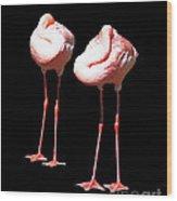 Siesta In Pink Wood Print