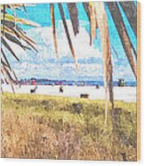 Siesta Key In Fall Wood Print