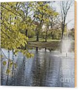 Sigulda Pond Wood Print