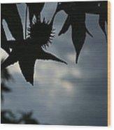 Sihouette Wood Print