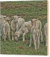 Silence Of The Lambs Wood Print