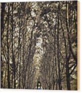 Silence Wood Print by Suradej Chuephanich