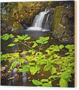 Silent Brook Wood Print