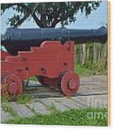 Silent Cannon Wood Print