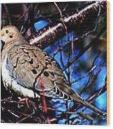 Silent Dove Sm  Wood Print