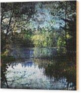Silent Lake Ludington Michigan Wood Print
