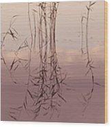 Silent Rhapsody. Sacred Music II Wood Print