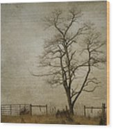 Silent Solitude Wood Print