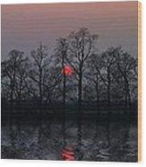 Silent Sun Wood Print