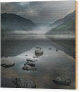 Silent Valley Wood Print