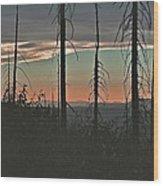 Silhouette @ Yosemite Wood Print