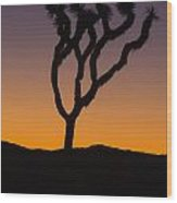 Silhouette Of A Joshua Tree At Sunset Wood Print