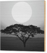Silhouette Of A Tree At Sunrise Wood Print